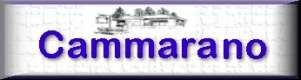 Click for Cammarano Real Estate Agency.